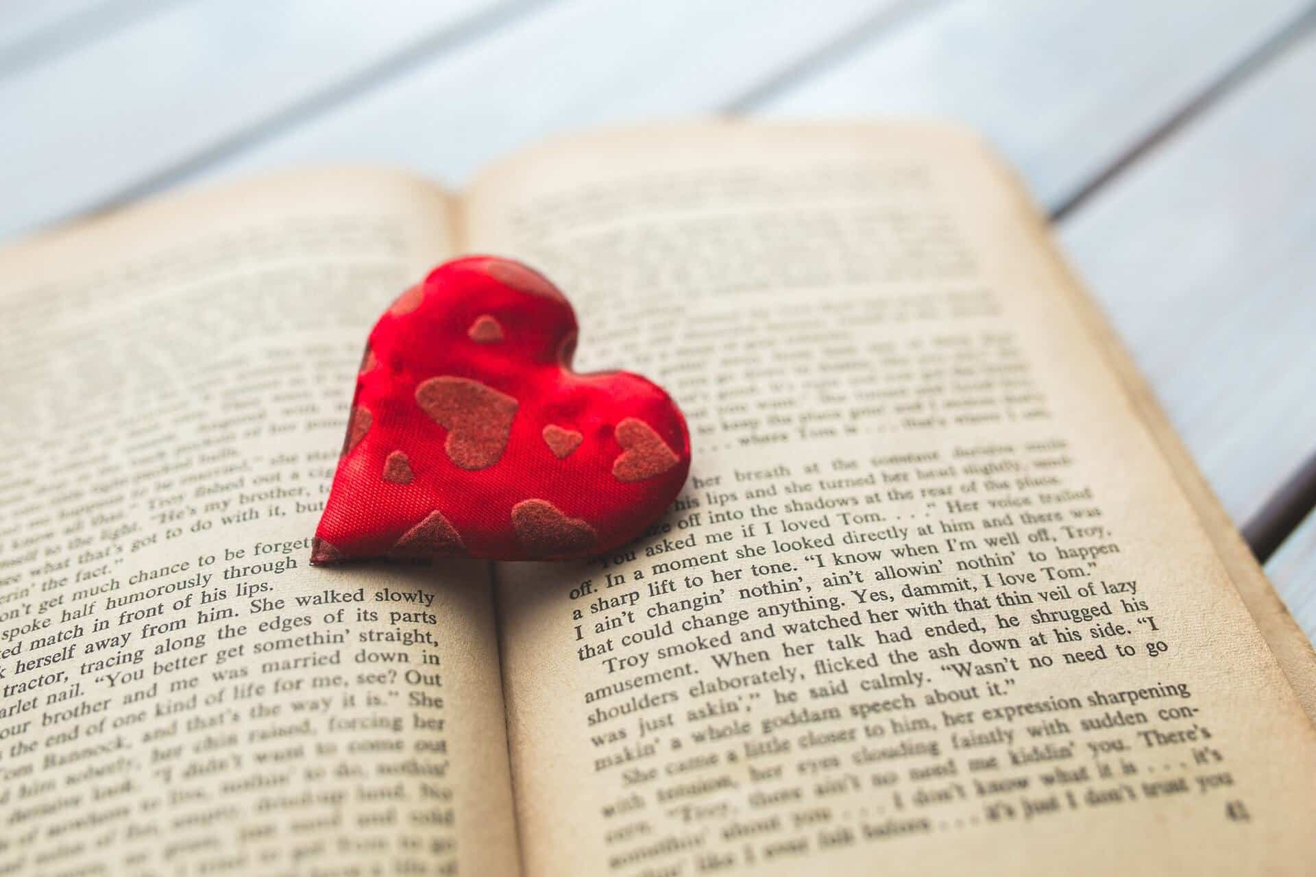 Learning A Language In Your 30s  Book With Heart