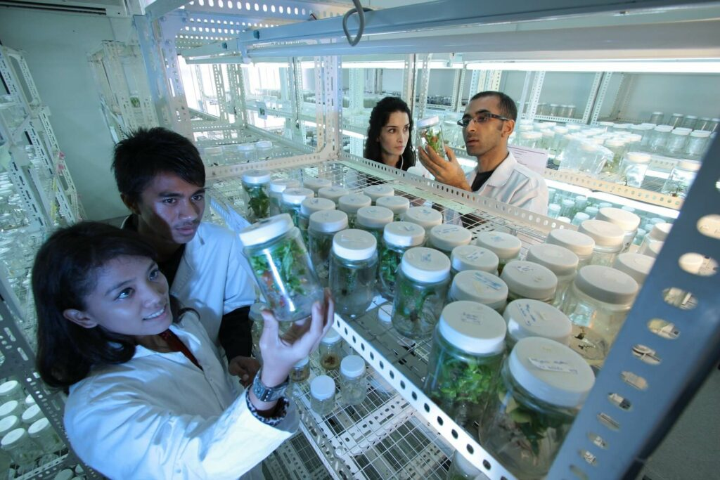 Scientists in the lab